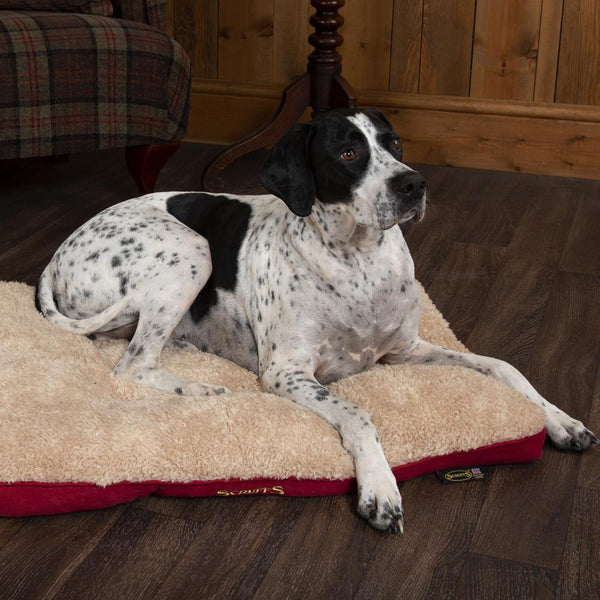 Cosy Dog Mattress - Burgundy Dog Bed Scruffs®