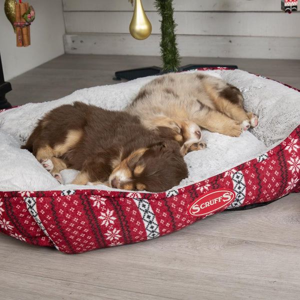 Santa Paws Box Bed - Red Dog Bed Scruffs®