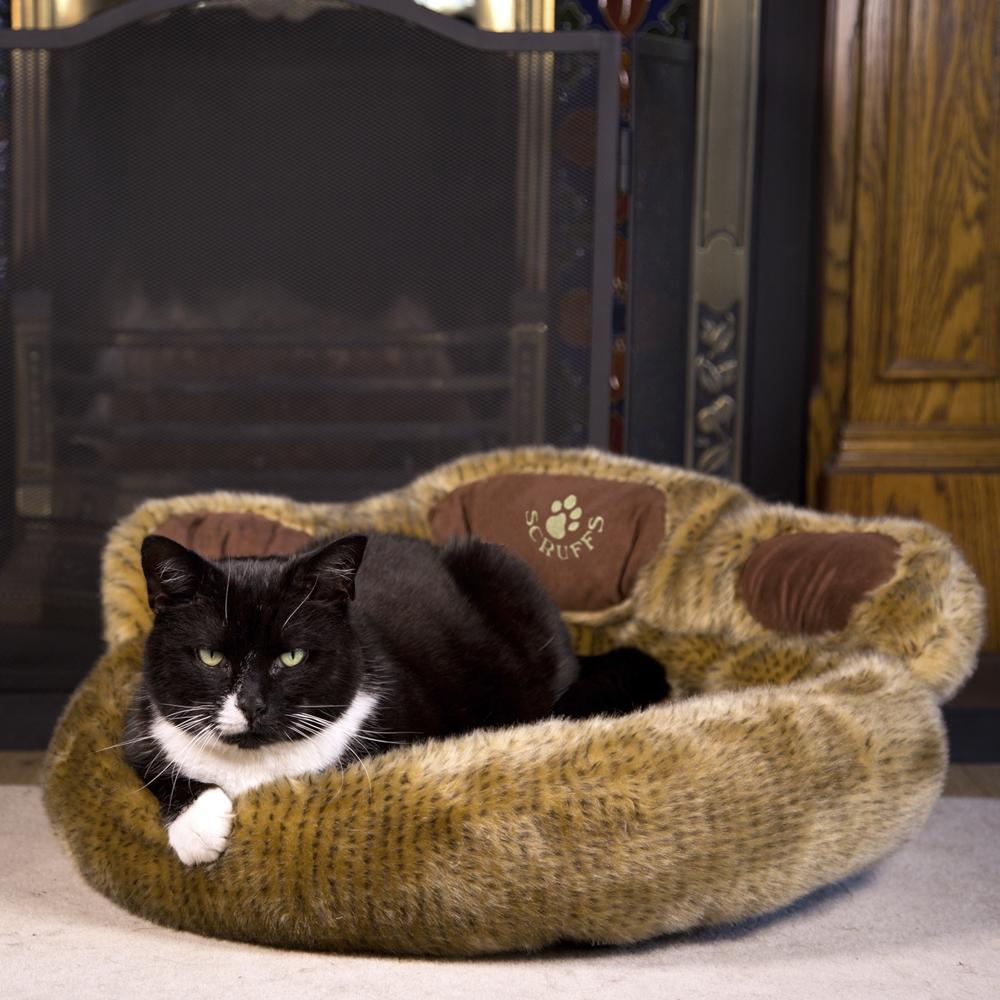 Paw Cat Bed - Teddy Bear