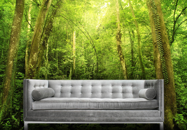 Rain Forest Wall Decal