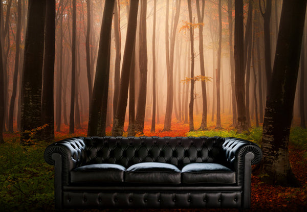 Misty Forest Wall Decal
