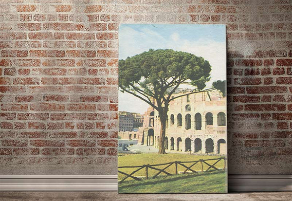 Colosseum Vintage Canvas