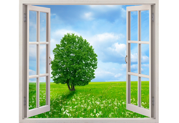 Window with Tree and Dandelions Wall Decal