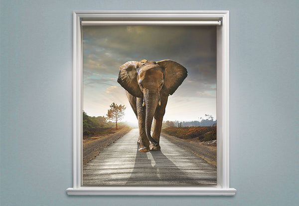 Lone Elephant Roller Shades