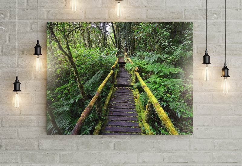 Moss Covered Bridge Canvas