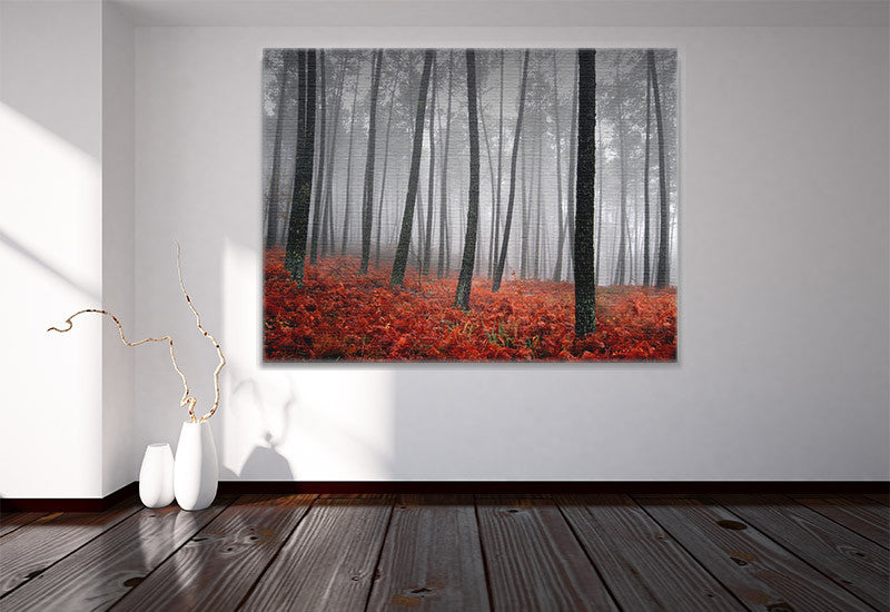 Misty Forest Scene Canvas