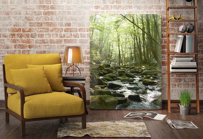 Rocky Stream Canvas