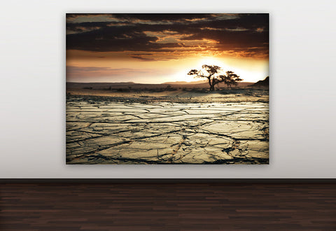 Desert Sunset Canvas