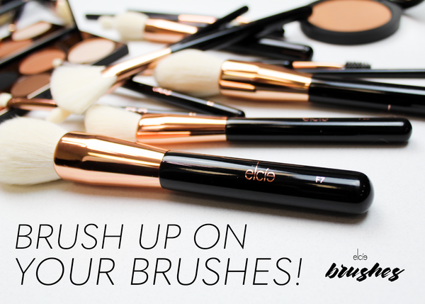 Brush up on your Brushes!