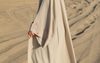 Abaya : Symbol of Luxury and Elegance