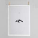 Paper Collective Graphic Poster, Paper Collective, Huset | Modern Scandinavian Design