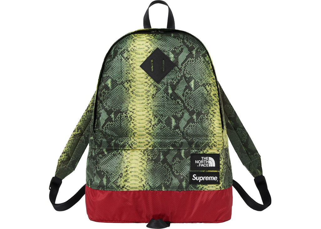 Supreme The North Face Snakeskin Lightweight Day Pack- Green