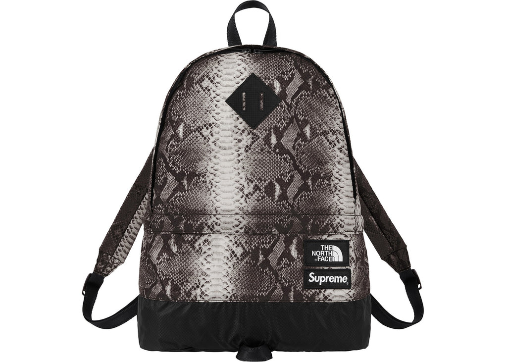 Supreme The North Face Snakeskin Lightweight Day Pack- Black