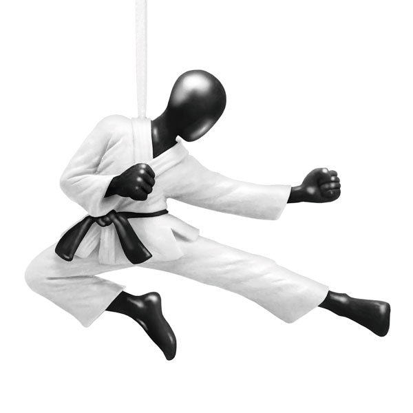Hallmark Martial Arts Ornament