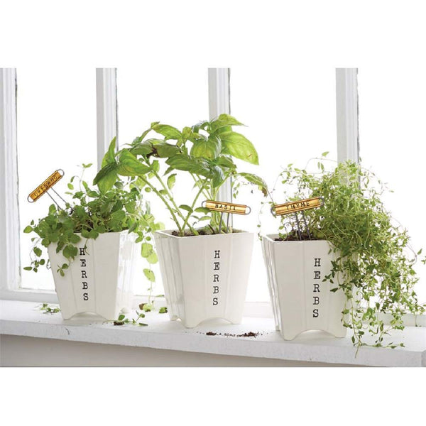 Mud Pie Herb Pot and Marker Set of 3
