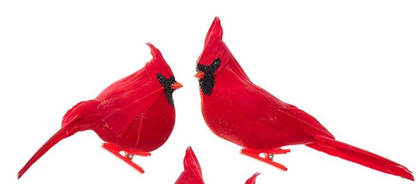 Kurt Adler Velvet Cardinal ON Clip - 2 Assorted