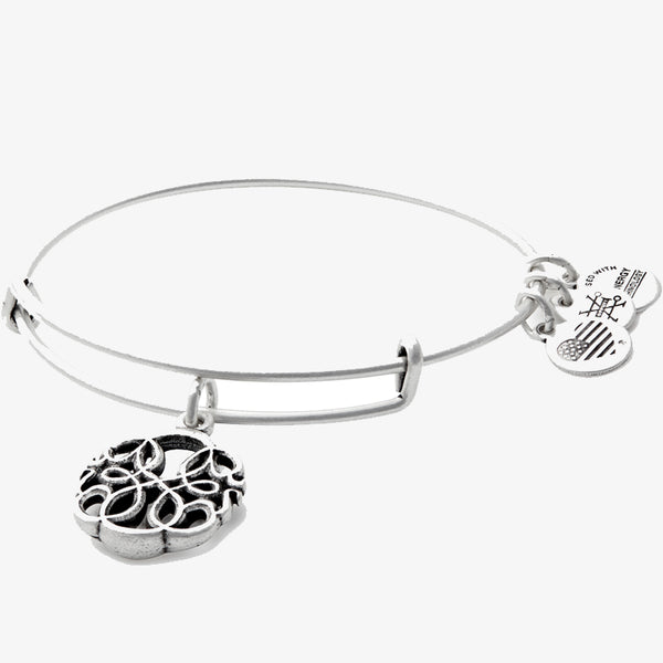 Alex and Ani PATH OF LIFE Charm Bangle RAFAELIAN SILVER