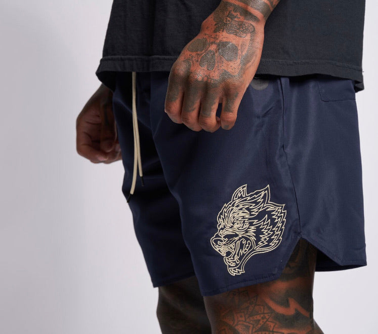 Fasted Track Shorts in Navy/Tan