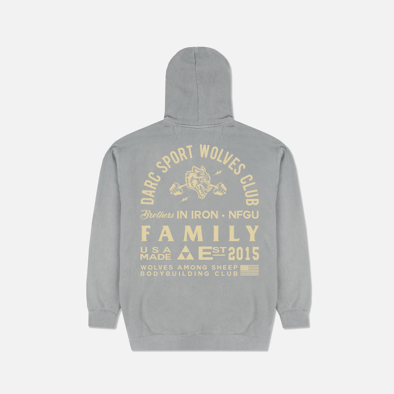 Ohana In Iron Pigment Wash Hoodie in Gray