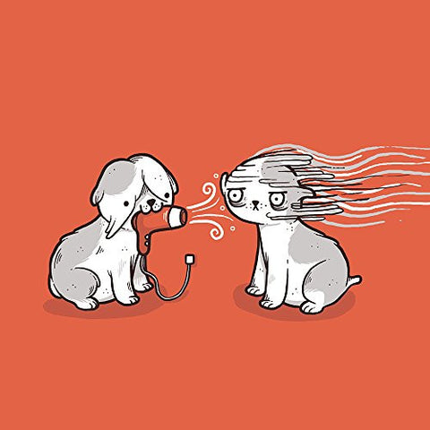 'Blow Dry' Cute Pet Humor - Vinyl Sticker