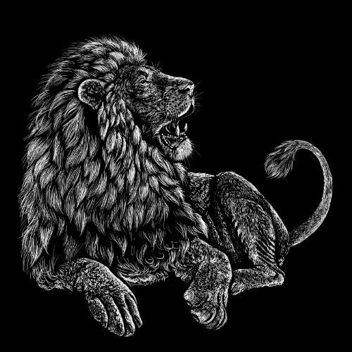 'Majestic Lion' Big Cat Jungle King Black & White Artwork - Vinyl Sticker