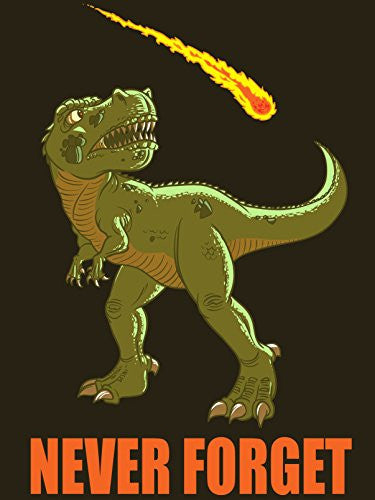 'Dinosaur Never Forget' Asteroid & Tyrannosaurus Rex Humor 18x24 - Vinyl Print Poster