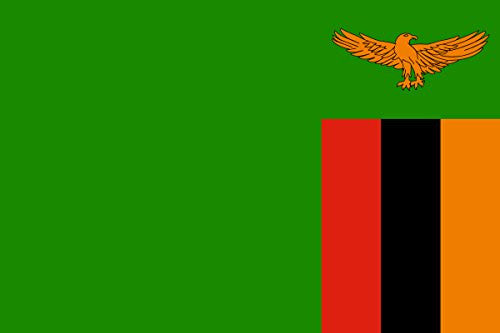 Zambia - World Country National Flags 18x12 - Vinyl Print Poster