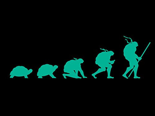 'Evolution' Funny Transformation Fighting Turtles Parody 24x18 - Vinyl Print Poster