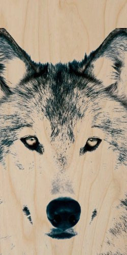 Wolf Dog Wildlife Closeup - Plywood Wood Print Poster Wall Art