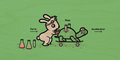 'Using Force' Funny Bunny Rabbit & Turtle Physics Humor - Plywood Wood Print Poster Wall Art