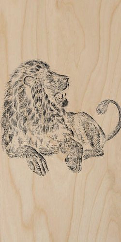 'Majestic Lion' Big Cat Jungle King Artwork - Plywood Wood Print Poster Wall Art