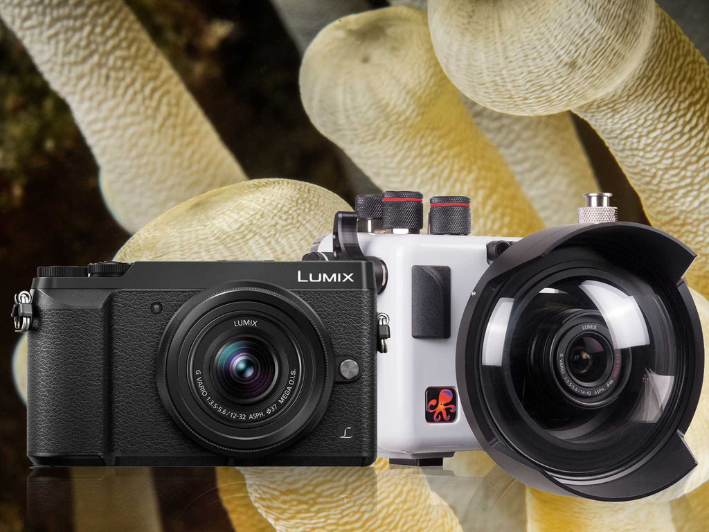 Panasonic Lumix GX85 Underwater Housing & Camera Review
