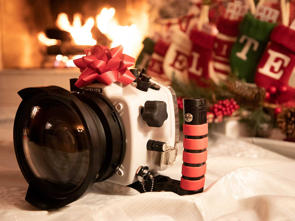 2019 Holiday Gift Guide for Underwater Photographers