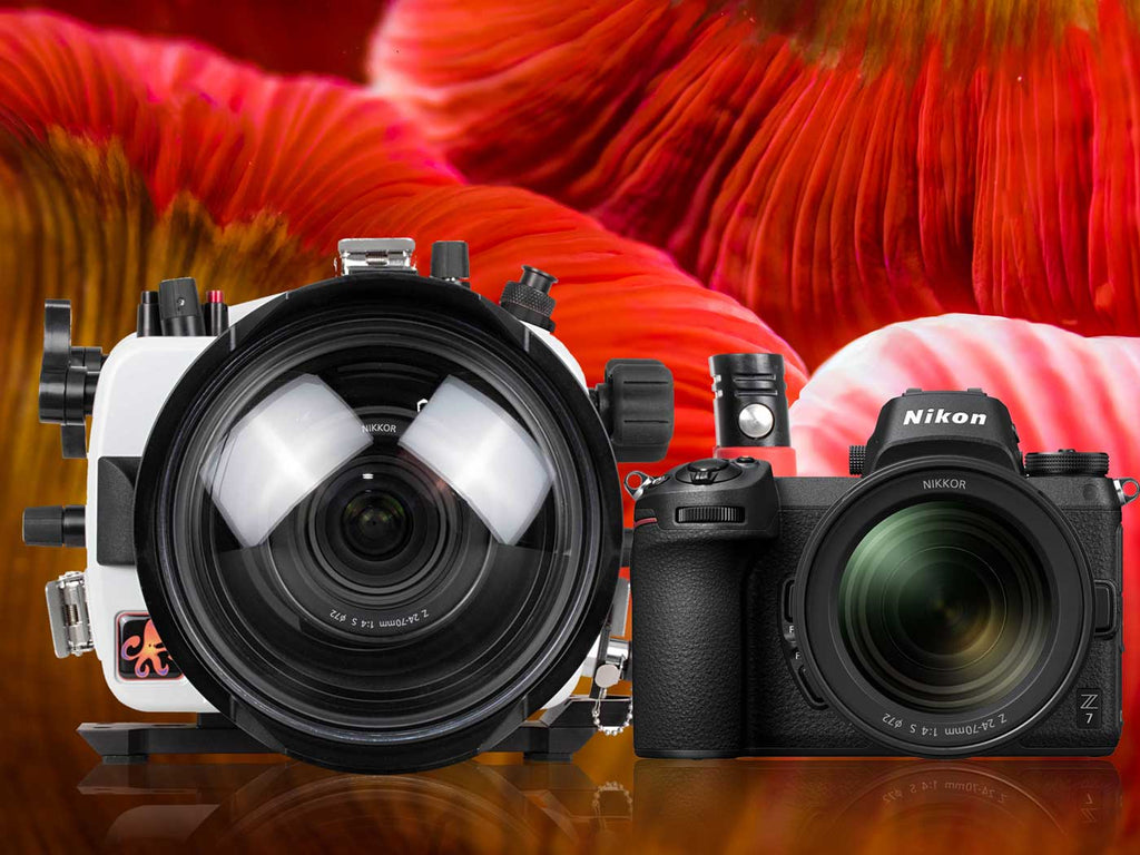 First Look Nikon Z6, Z7 Mirrorless Underwater Housing