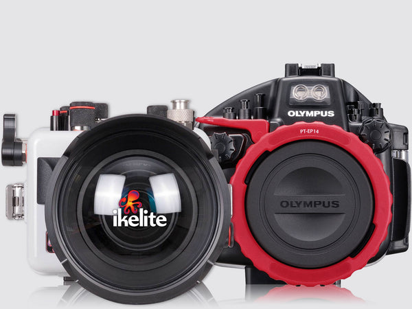 Top 10 Differences Between Olympus and Ikelite Housings