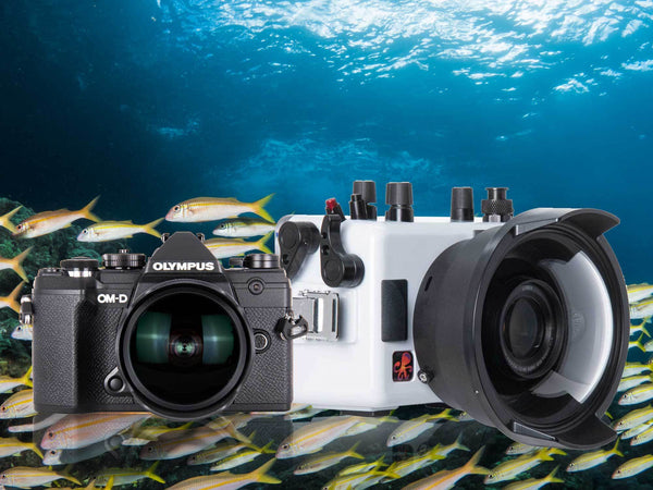 First Look Olympus OM-D E-M5 III Underwater Housing