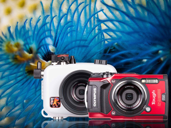 Olympus Tough TG-5 Underwater Housing & Camera Review