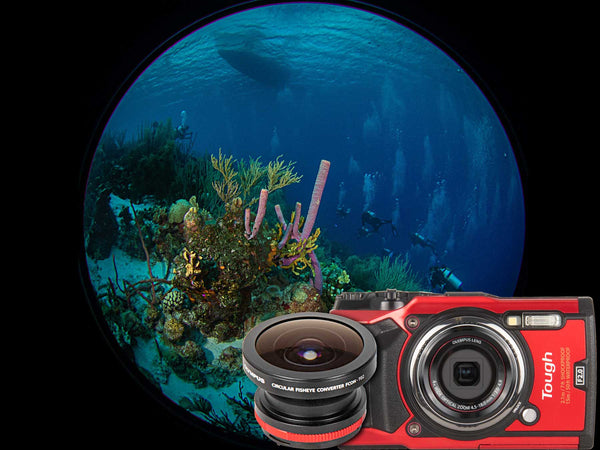 Olympus FCON-T02 Circular Fisheye and Tough TG-6 Underwater Photos