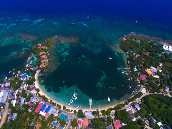 An Insider's Guide to Diving Roatan, Bay Islands