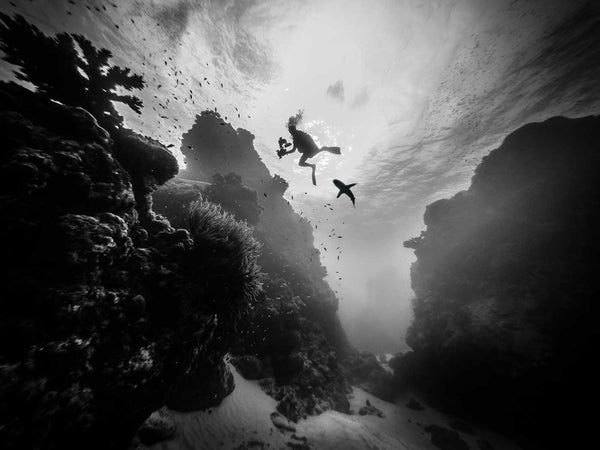 Black and White Conversion for Underwater Photography