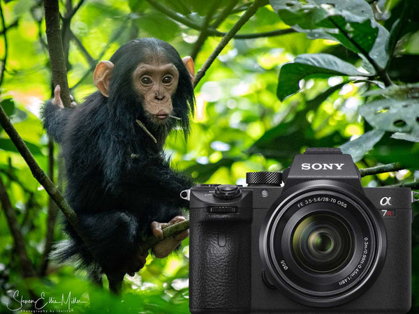 Dive Diversions: On Safari in Uganda with the Sony Alpha A7R III