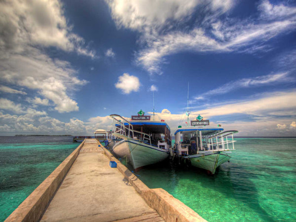 An Insiders Guide to Diving Wakatobi Resort Indonesia