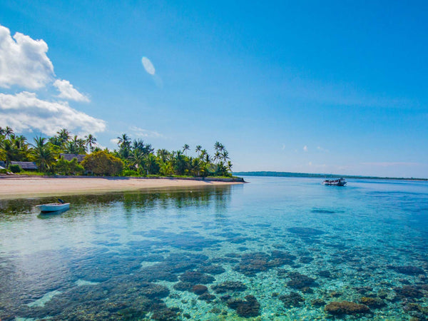 Expedition | Wakatobi Resort Indonesia | March 2-16, 2020