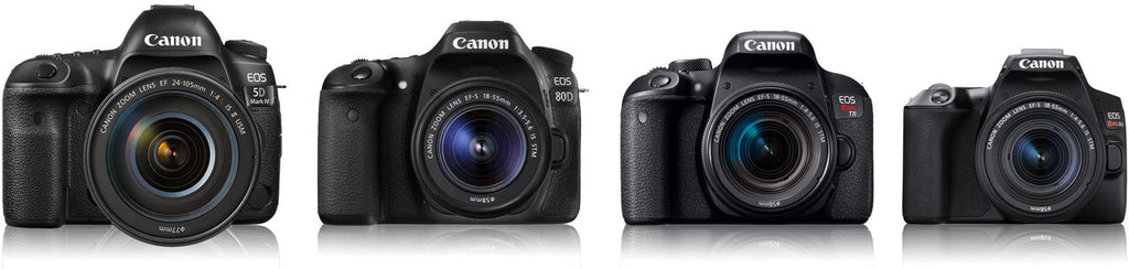Canon DSLR Cameras Size Comparsion