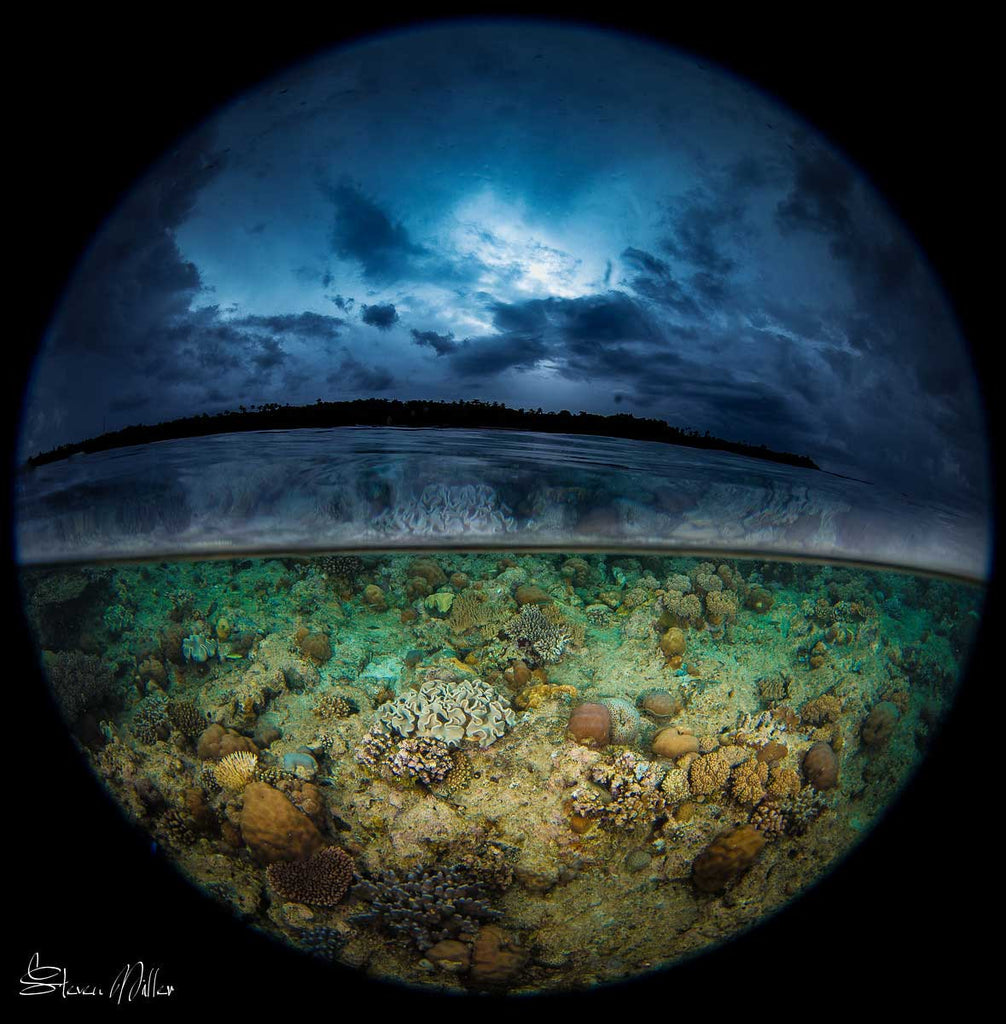 Over-under with a circular fisheye lens