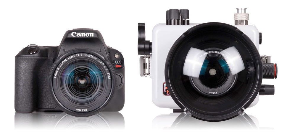 Canon Rebel SL2 Housing and Camera Kit