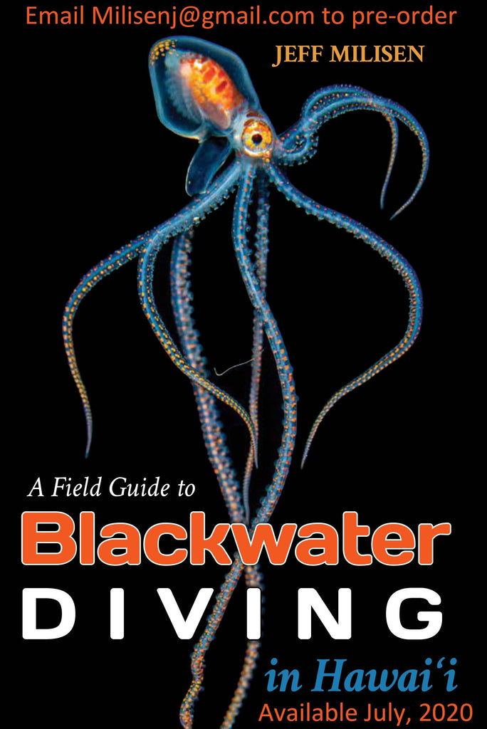 Blackwater Diving Book Copyright Jeff Milisen