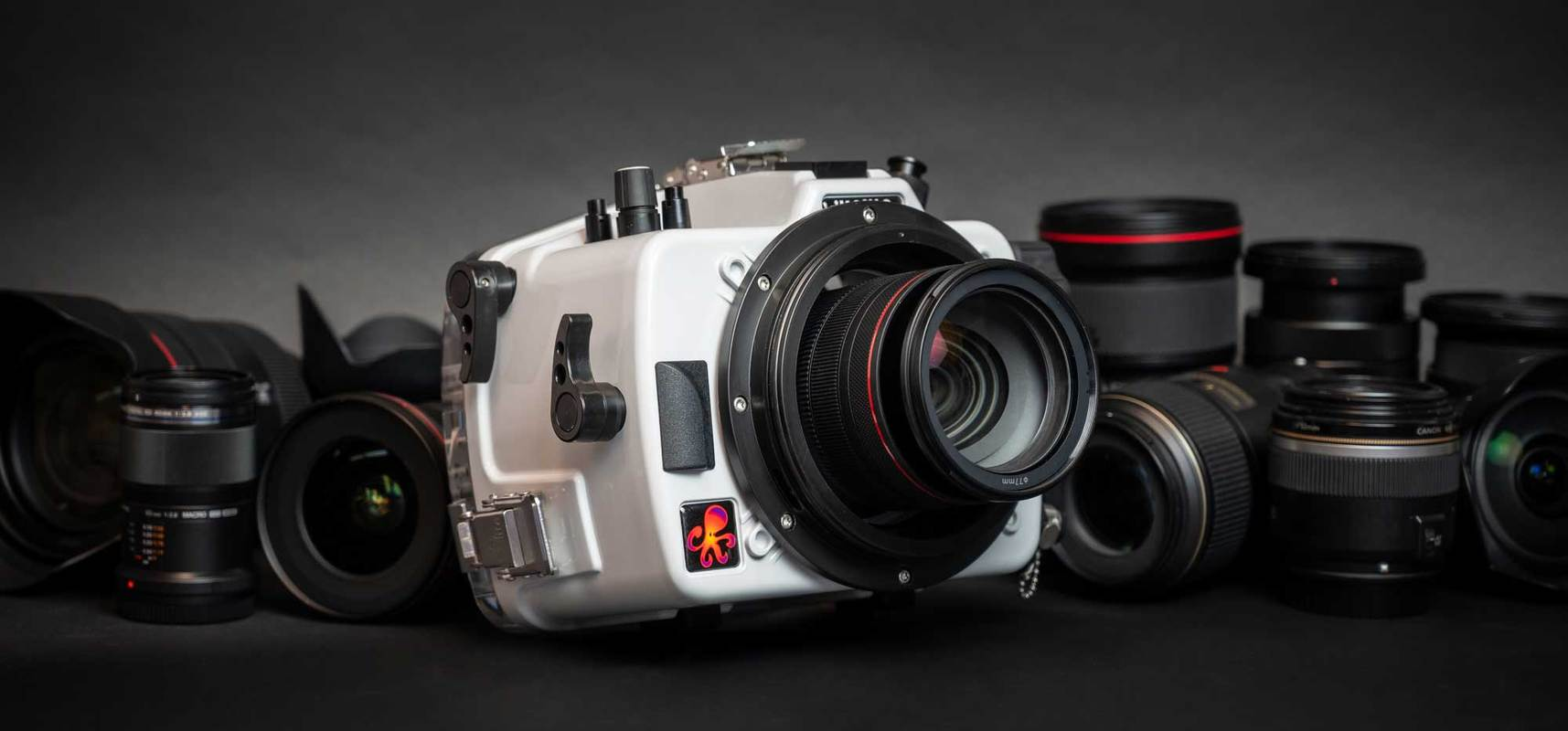 Canon Rebel SL2 Housing & Camera