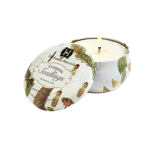 Hillhouse Naturals - Evergreen Seedlings Tin Candle