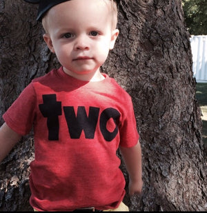 two red boys 2nd birthday shirt with navy, mint, grey, blue, two kids birthday theme second party
